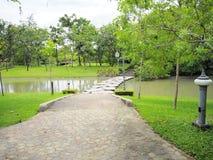 красивейший сад Зеленая лужайка в благоустраиванном официально саде Парк ar Стоковая Фотография