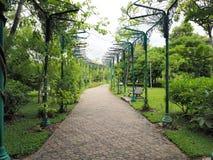 красивейший сад Зеленая лужайка в благоустраиванном официально саде Парк ar Стоковое Изображение