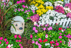 красивейший сад цветка Стоковое Изображение RF