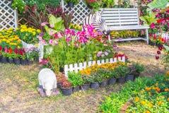 красивейший сад цветка Стоковые Фото