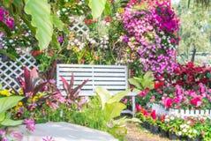 красивейший сад цветка Стоковая Фотография