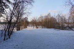 Красивейший сельский ландшафт предыдущая весна Деревья освещены по солнцу снежок голубого неба Россия марш стоковая фотография