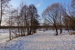Красивейший сельский ландшафт предыдущая весна Деревья освещены по солнцу снежок голубого неба Россия марш стоковая фотография rf