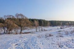 Красивейший сельский ландшафт предыдущая весна Деревья освещены по солнцу снежок голубого неба Россия марш стоковые фотографии rf