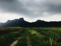 красивейший Таиланд стоковое изображение