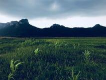 красивейший Таиланд стоковое фото rf