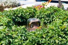 красивейший фонтан Стоковое фото RF