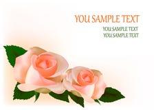 красивейший чай роз иллюстрации Стоковое Изображение RF