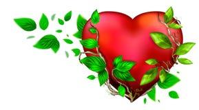 красивейший яркий красный цвет сердца цвета иллюстрация вектора