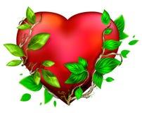 красивейший яркий красный цвет сердца цвета бесплатная иллюстрация