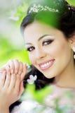 красивейший blossoming сад невесты Стоковое Изображение