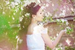 красивейший blossoming сад невесты Стоковые Изображения