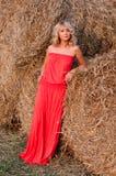 красивейший haystack blondie ближайше Стоковое фото RF