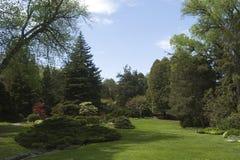 красивейший landscaping Стоковое Изображение