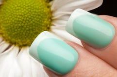 красивейший manicure Стоковые Изображения