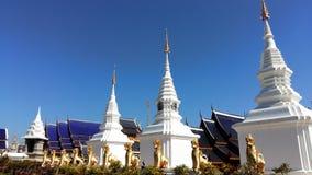 красивейший pagoda Стоковое Изображение