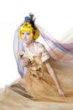 красивейший princess девушки ткани стоковое изображение rf