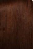 красивейший shine волос стоковые изображения rf