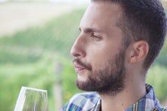 Красивое бородатое зеркало человека вина Стоковые Фото