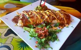 Красивое буррито стоковые фотографии rf