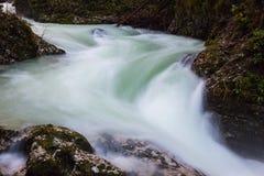 Красивое близко кровоточенное ущелье, Словения Vintgar стоковые изображения