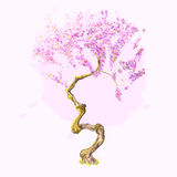 Красивое вишневое дерево акварели Стоковое Фото