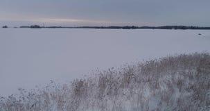 Красивое воздушное видео замороженного озера льда в Швеции, Скандинавии видеоматериал