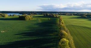 Красивое воздушное видео Katrineholm, Швеции, Скандинавии на день осени видеоматериал