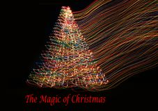 Красивое волшебство рождественской елки Стоковая Фотография