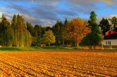Красивое время захода солнца на ферме Стоковые Изображения RF