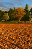Красивое время захода солнца на ферме Стоковое Изображение
