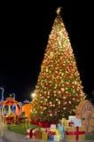Красивое дерево Стоковые Фотографии RF