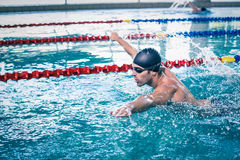 Красивое заплывание человека Стоковые Изображения RF