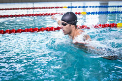 Красивое заплывание человека Стоковое фото RF