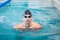 Красивое заплывание человека Стоковое Изображение RF
