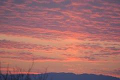 Красивое захода солнца во времени вечера стоковое изображение rf