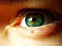 Красивое зеленого цвета ясности глаза голубое стоковое фото rf