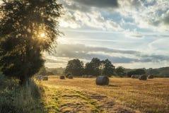 Красивое изображение ландшафта сельской местности связок сена в fie лета Стоковое фото RF