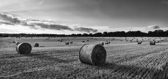 Красивое изображение ландшафта сельской местности связок сена в fie лета Стоковое Изображение