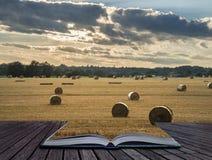 Красивое изображение ландшафта сельской местности связок сена в fie лета Стоковые Фото