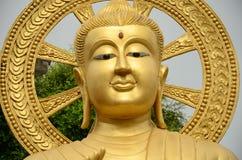 Красивое изображение Будды золота Стоковые Изображения RF