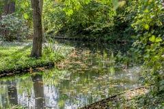 Красивое изображение небольшого реки на чудесный день осени стоковые фотографии rf