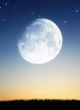 Красивое изображение силуэтов природы Стоковая Фотография RF