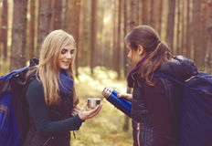 2 красивое и молодые женщины идя в лес и выпивая чай Стоковая Фотография RF