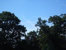 Красивое мерцающее сметанообразное голубое небо над пропуская землей парка Стоковое Фото