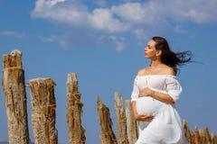 Красивое молодое положение беременной женщины в природе на озере соли стоковые изображения rf