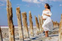 Красивое молодое положение беременной женщины в природе на озере соли стоковые изображения