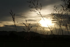 Красивое небо захода солнца восхода солнца для предпосылки Стоковые Изображения