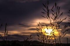 Красивое небо захода солнца восхода солнца для предпосылки Стоковые Фото