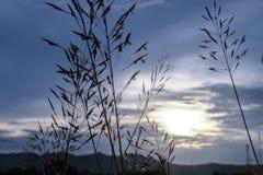 Красивое небо захода солнца восхода солнца для предпосылки Стоковое Изображение RF
